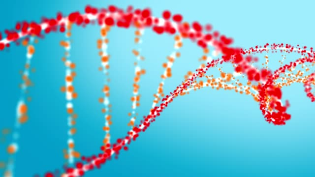 dna helix structure formation - dna test stock videos and b-roll footage