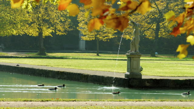 hellbrunner park im herbst - herbst stock videos & royalty-free footage