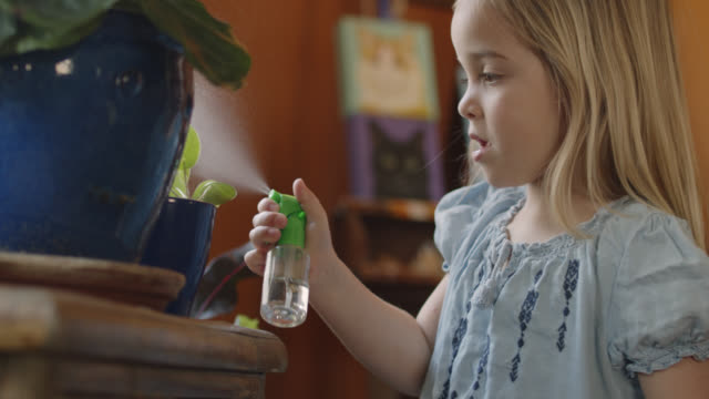 cu helpful girl uses spray bottle to mist potted plants indoors - children only stock videos & royalty-free footage