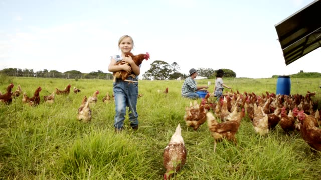 helping out around the farm - two generation family stock videos & royalty-free footage