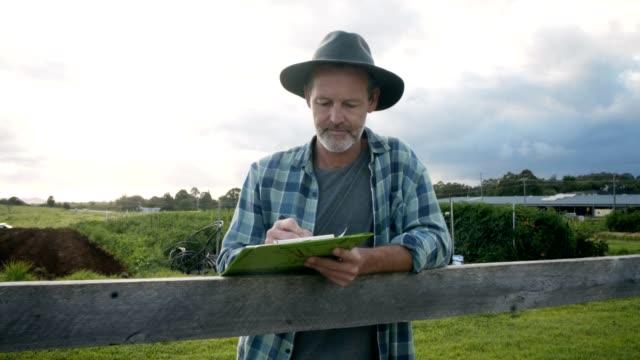 vídeos de stock, filmes e b-roll de ajudando ao redor da fazenda - galinha ave doméstica
