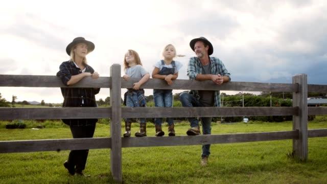 vídeos de stock e filmes b-roll de helping out around the farm - galinha ave doméstica