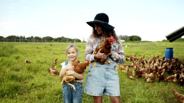 helping out around the farm - female animal stock videos & royalty-free footage