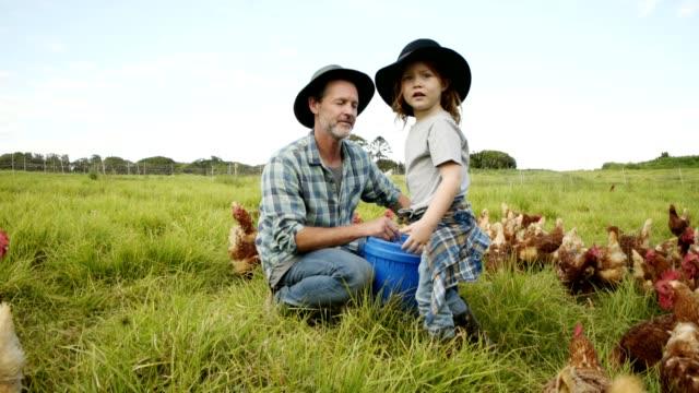 vídeos de stock e filmes b-roll de helping out around the farm - animal family