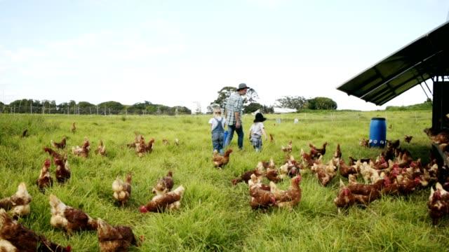 Ayudando hacia fuera alrededor de la granja