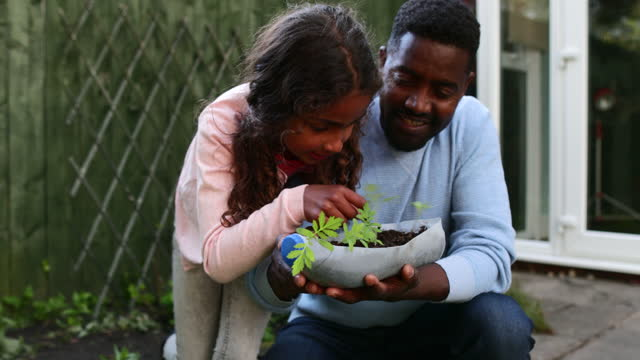 helping with the gardening - growth stock videos & royalty-free footage