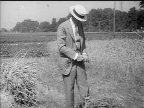 vídeos de stock, filmes e b-roll de b/w henry ford in suit picking grain on farm field / documentary - só um homem idoso