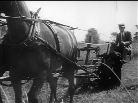 b/w henry ford sitting on plow driving horse / documentary - solo un uomo anziano video stock e b–roll