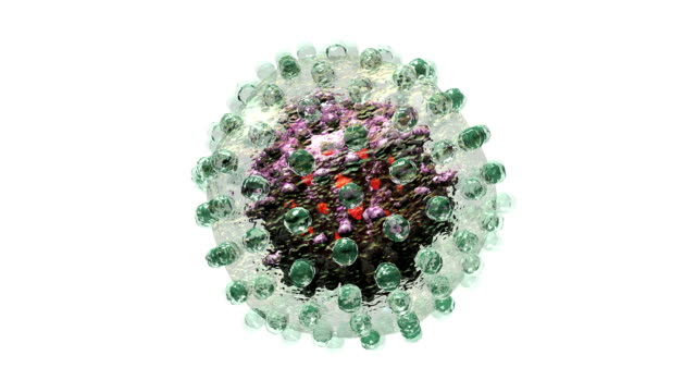 'Hepatitis B virus, animation'