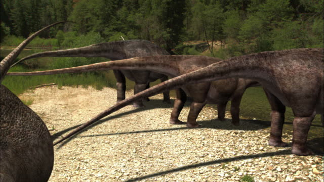 CGI, MS, Herd of Brontosauruses  drinking from stream, rear view
