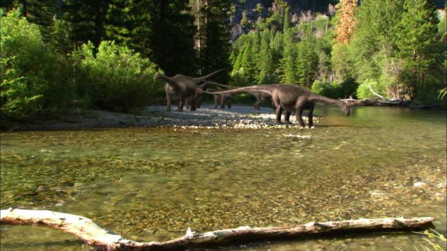 CGI, WS, Herd of Brontosauruses  drinking from stream