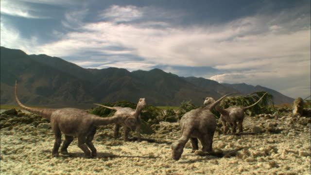 CGI, WS, Herd of Brontosauruses in field