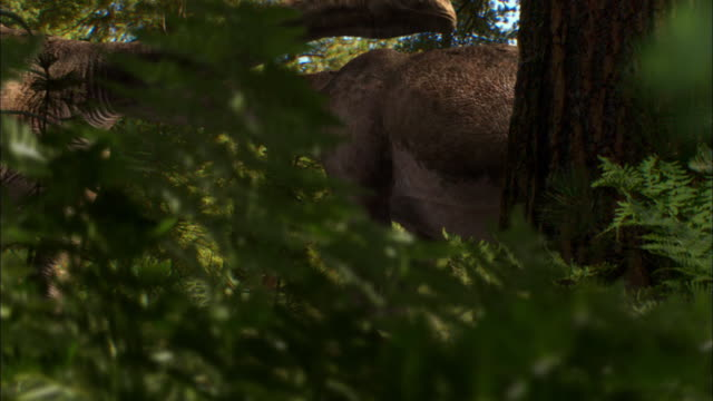 cgi, ms, td, herd of brontosauruses with babies walking in forest - paleozoology stock videos and b-roll footage