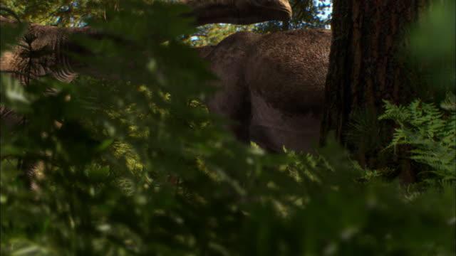 CGI, MS, TD, Herd of Brontosauruses with babies walking in forest