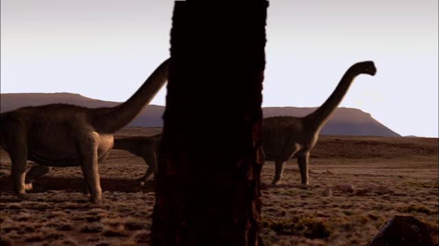 a herd of camarasauruses walk across arid terrain as a pterodactyl flies overhead. - 恐竜点の映像素材/bロール