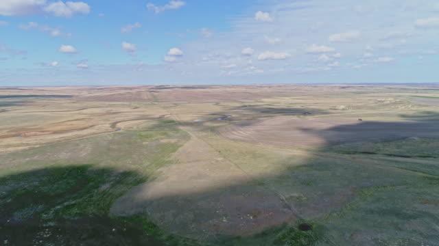 春先にはモンタナ州リッチー近くの草原を走る北米先住民のアンテロープの群れ。前方および上昇カメラの動きとパノラマ空中ドローンビデオ映像。 - プロングホーン点の映像素材/bロール