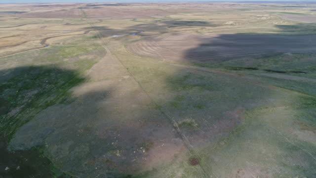 春先にはモンタナ州リッチー近くの草原を走る北米先住民のアンテロープの群れ。前方カメラの動きとパノラマ空中ドローンビデオ映像。 - プロングホーン点の映像素材/bロール
