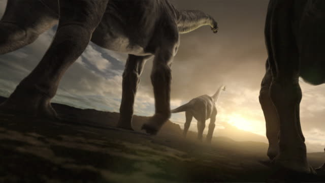 A herd of Sauroposeidon dinosaurs walk across a wide plain: an animation depicts the skeleton anatomy of a Sauroposeidon.