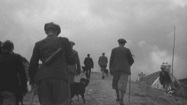 1944 montage herder and sheepdog walking through field and hill to climb highest peak in highland region / achriesgill, scotland, united kingdom - achriesgill stock videos and b-roll footage