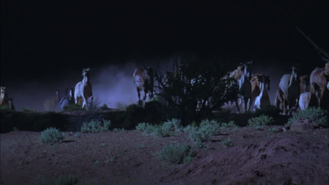Herds of wild horses leave clouds of dust behind as they stampede across the desert in the moonlight.