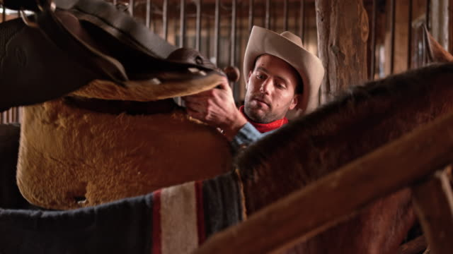ds herdsman saddling his horse in stable - saddle stock videos & royalty-free footage