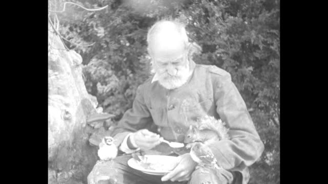 hermit oliver p. tripp reads a book outdoors as squirrels sit on his shoulder and thigh; another hops down to his lap and looks at the book, then... - thigh human leg stock videos & royalty-free footage