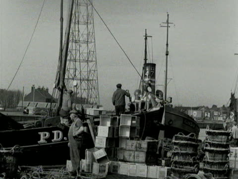 herring fishermen arrive back at great yarmouth and start to unload their catch. - イーストアングリア点の映像素材/bロール