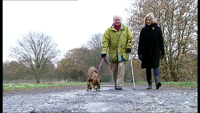 potters bar ext anna white interview with staffordshire terrier 'christmas cracker' sitting on her lap sot brian sewell walking along with staffie... - cracker stock videos and b-roll footage