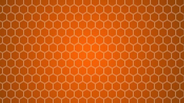 vídeos y material grabado en eventos de stock de hexagonal, fondo de nido de abeja - fondo naranja