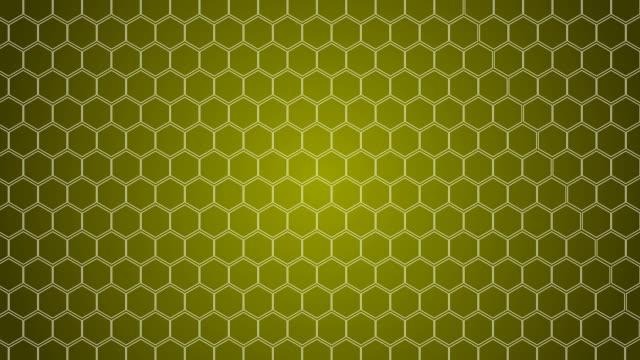 hexagonal, honeycomb background - ape video stock e b–roll