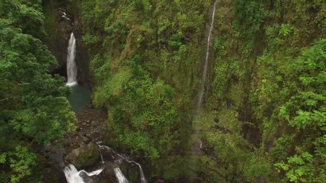 Falls im Zentrum der Fernbedienung Maui Island Wald versteckt