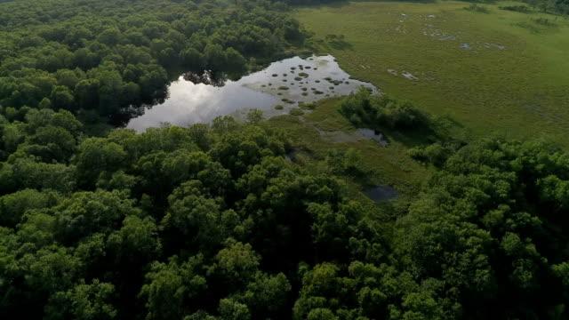 vidéos et rushes de lac caché aérienne - bras mort de cours d'eau