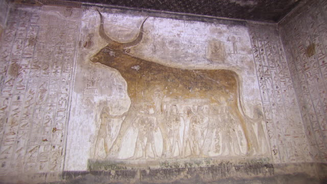 CU ZO Hieroglyphics carving in Tomb of Seti 1 / Egypt
