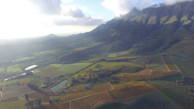 high above the world - stellenbosch stock videos and b-roll footage