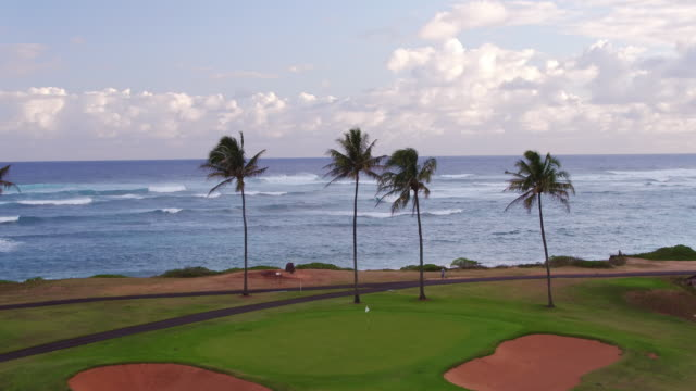 high angle aerial shot of a golf ball flying over golf course on beach - turtle bay hawaii stock videos and b-roll footage