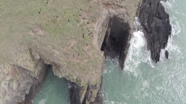 stockvideo's en b-roll-footage met high angle aerial track along pembrokeshire cliffs - pembrokeshire