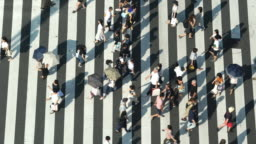 4K High Angle aerial view wide shot of pedestrian man and woman tourist walking crossing the street crosswalk with traffic driving cars on the road in summer at Ginza, Tokyo, Japan