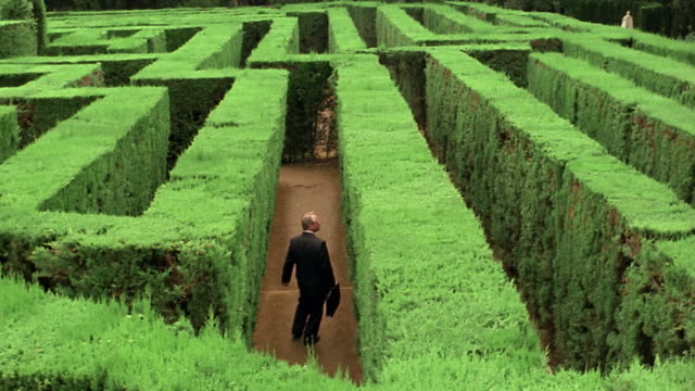 high angle businessman carrying briefcase walking in hedge maze looking for exit / spain - maze stock videos & royalty-free footage
