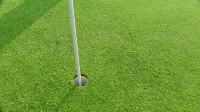 vidéos et rushes de high angle close up flag being pulled out of hole / golf ball rolling into hole / ballybunion, ireland - balle de golf
