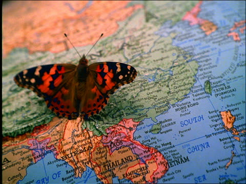 vídeos y material grabado en eventos de stock de high angle close up of butterfly with flapping wings standing on china on globe of earth - globo terráqueo para escritorio