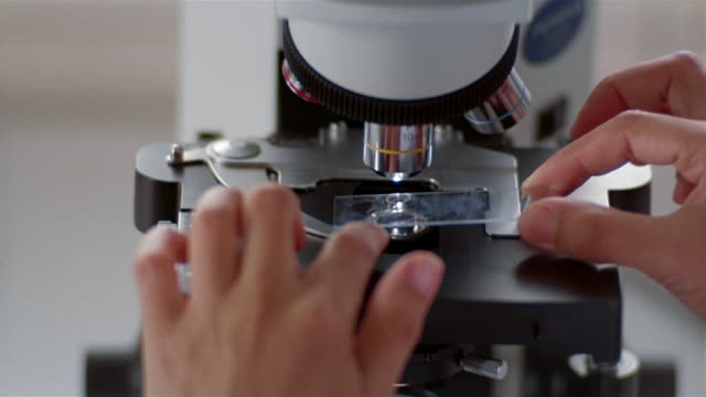 high angle close up rack focus researcher looking at slide through microscope at laboratory in milk factory - scientific experiment stock videos and b-roll footage