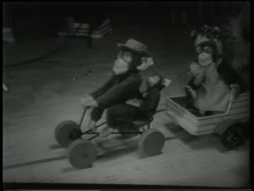 b/w 1951 high angle close up toy monkeys in wagons on floor of window display - 1951 bildbanksvideor och videomaterial från bakom kulisserna