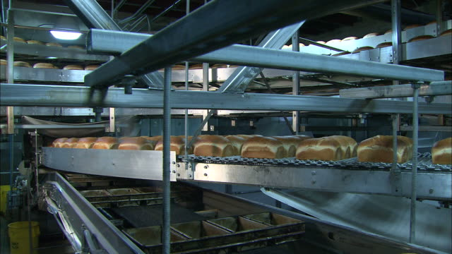 high angle crane - loaves of bread move along conveyors in a factory /  colorado, united states - loaf stock videos & royalty-free footage