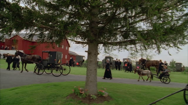 vidéos et rushes de high angle crane shot amish families walking and riding horsedrawn buggies to large red barn - amish