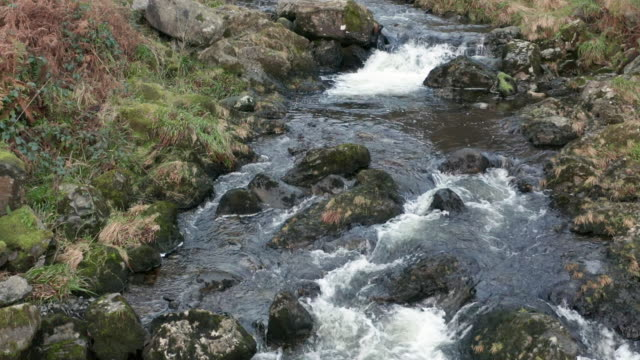 vídeos y material grabado en eventos de stock de imágenes de drones de gran angular de un pequeño arroyo en un entorno rural en dumfries y galloway - johnfscott