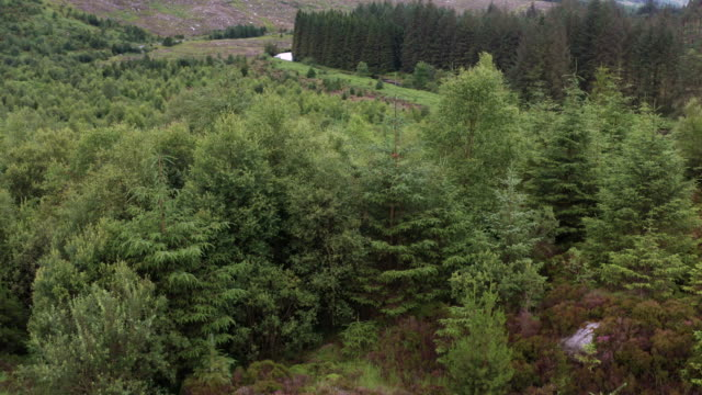 high angle drone view of a large granite outcrop in a remote part of rural south west scotland - johnfscott stock videos & royalty-free footage