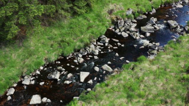vidéos et rushes de vue de drone à angle élevé d'un petit ruisseau coulant à travers une zone de forêt dans le sud-ouest de l'ecosse - remote location