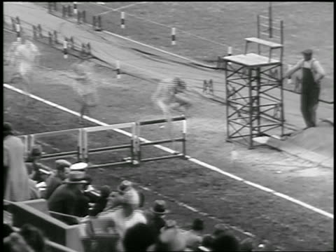 b/w 1933 high angle group of men jumping over hurdles in race / philadelphia / newsreel - 1933 stock videos and b-roll footage