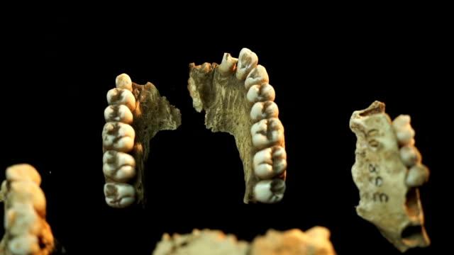 high angle cu jaw bone on a turn/ muldersdrift/ south africa - ハウテング州点の映像素材/bロール
