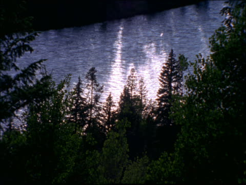 high angle  lake with trees in foreground - pinacee video stock e b–roll